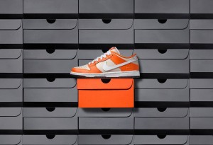 nike-sb-dunk-low-premium-orange-box