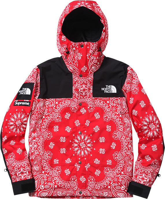 【2016fw】supreme 215 The North Face 174 Collaboration 【シュプリーム
