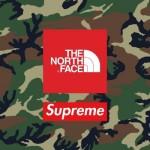 【Supreme x The North Face 11月19日発売】シュプリーム x ノースフェイス & レギュラーアイテム価格一覧!!【リンクあり】