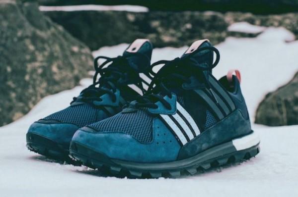 kith-aspen-ronnie-fieg-adidas-trail-boost-1