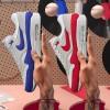 """【3月4日9:00発売予定】Nike Air Max 1 """" Anniversary """"【ナイキ エアマックス1アニバーサリー】"""