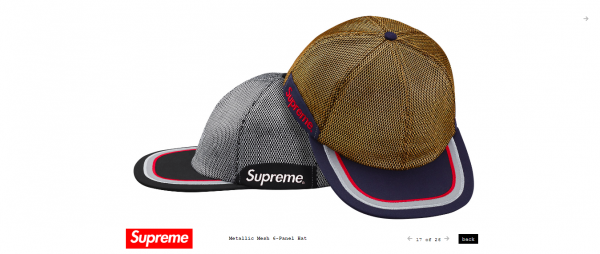 Supreme Metallic Mesh 6 Panel Hat