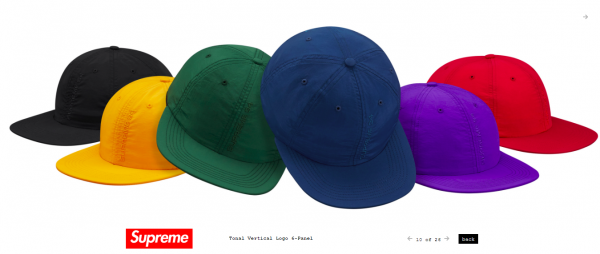 Supreme Tonal Vertical Logo 6 Panel