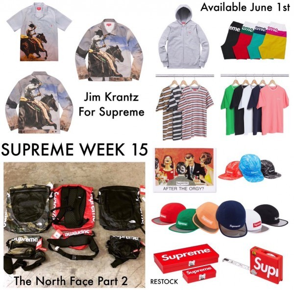 supreme-x-the-north-face-2017-ss-2