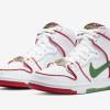 【1月18日発売】Paul Rodriguez x Nike SB Dunk High CT6680-100