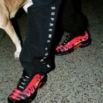 【10月17日発売】Supreme x Nike 2020FW Collection【エアマックスプラス】